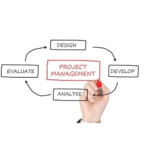 Proyecto y Viabilidad del Negocio en Microempresas
